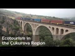Team Project Cukurovat